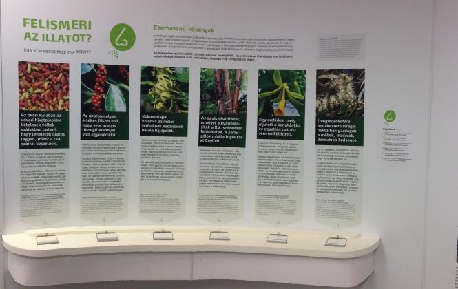Fűszeres interaktív tábla a Vácrátóti Arborétumban - video