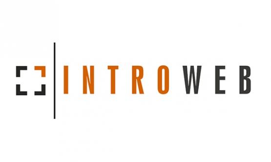 Introweb Kft.